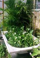 Zahradní plastové jezírko