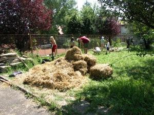 Mulčování trávou
