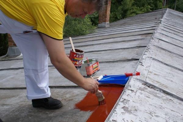Barva na starou plechovou střechu